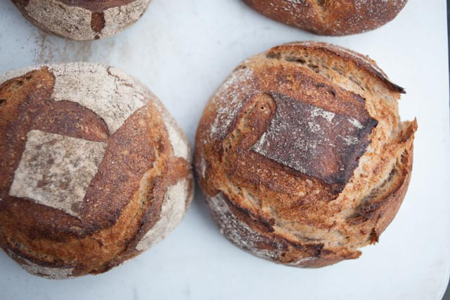 Rye bread just out of the wood-fired oven.